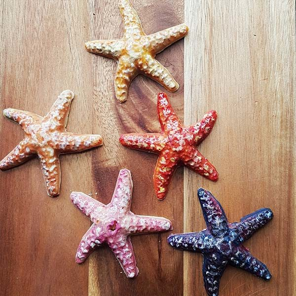 Vegan Chocolate Starfish Collection